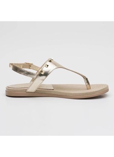 sporthink Sandalet Bej